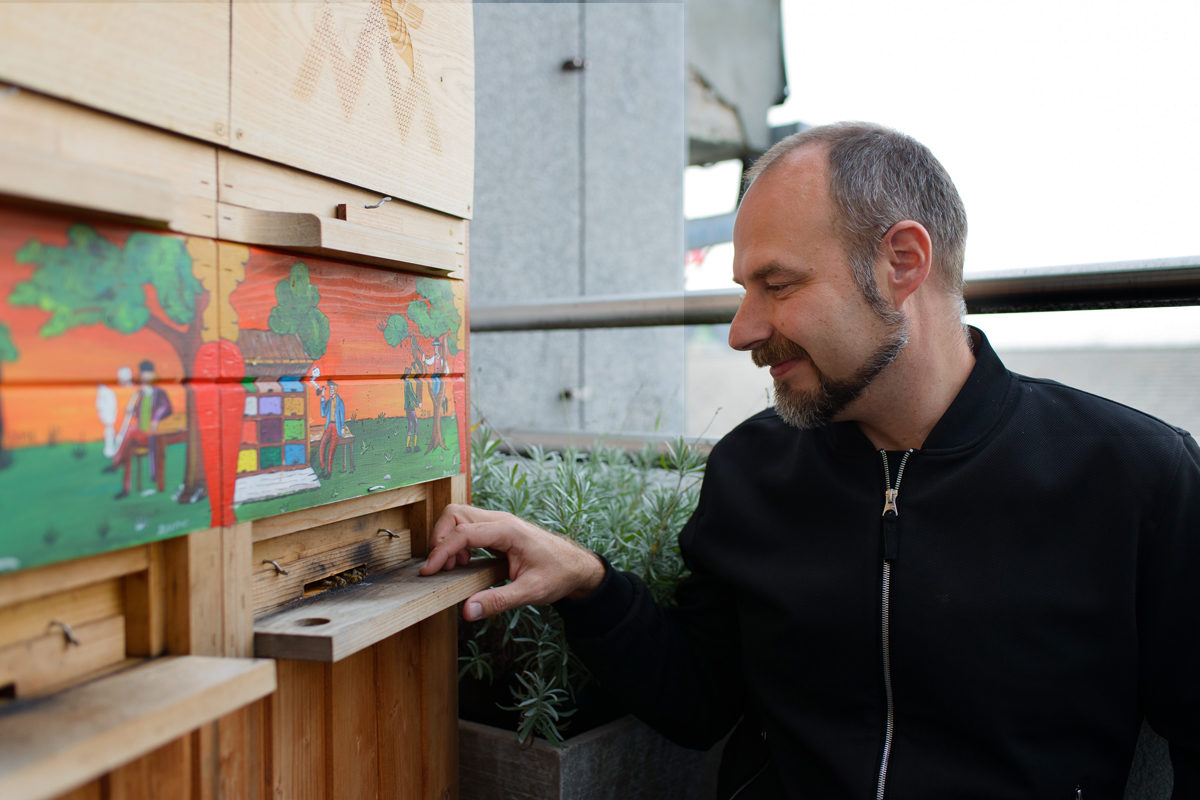 What the U.S. Could Learn From Slovenia About Protecting Bees