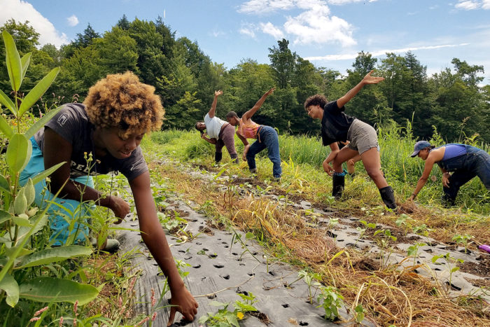 Dance moves teach the process of weeding. Photo by Neshima Vitale-Penniman.