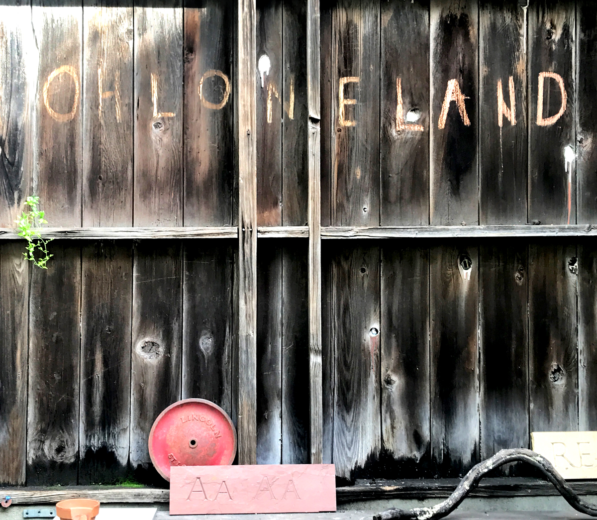 """A sign at Café Ohlone by mak'amham reads """"Ohlone Land"""" (Photo © Emily Wilson)"""
