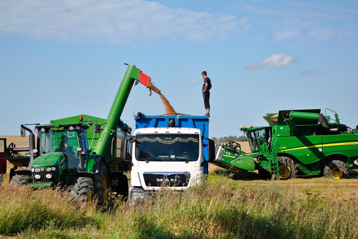 farmer harvesting corn