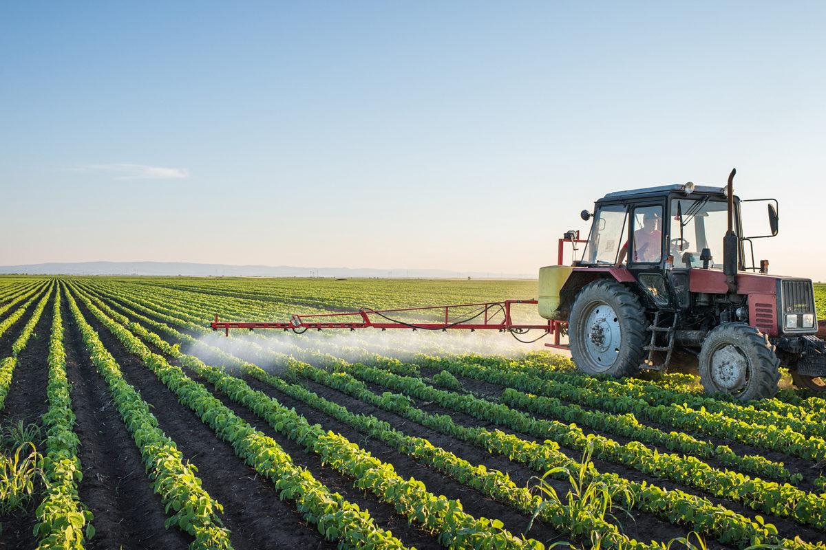 A Decade of Pesticides, GMOs, and Alternatives to Chemical