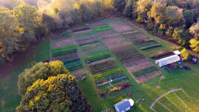 Dark Wood Farm from above. (Photo courtesy of Dark Wood Farm)