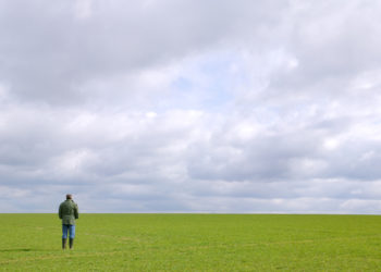 farmer standing alone in an empty field of his zero-sales farm