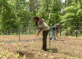 Keisha and Warren tend to their garden at their home. Photo © Lynsey Witherspoon