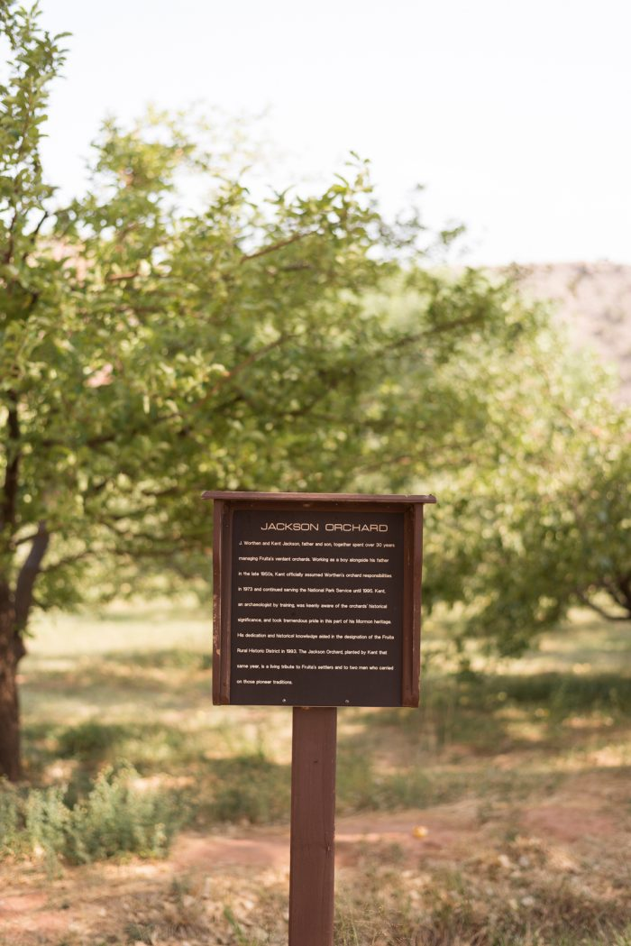 The entrance to the Jackson Orchard. The orchard is named for Worthen and Kent Jackson, a father and son pair who managed many of Fruita's orchards during the transitional phase from private holdings to federal land in the 20th century. Kent served as the orchard manager for the National Park Service from 1973 to 1995. The names of the orchards honor some of the original settlers of Fruita, as well as caretakers of the orchards themselves.