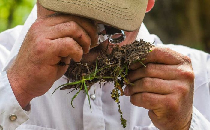 Inspecting the soil health at White Oak Pastures. (Photo courtesy of White Oak Pastures)