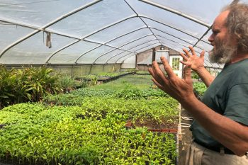 Heinz Thomet inside a greenhouse at Next Step Produce in Maryland