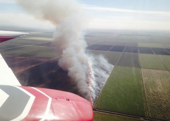 aerial view of a sugarcane harvest in florida with burning fields