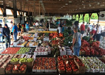 Peak summer season at the Chesterhill Produce Auction. (Photo credit: Rural Action)