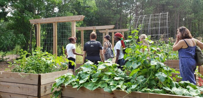 Touring the garden beds at the Food Forest at Browns Mill. (Photo courtesy of AgLanta)