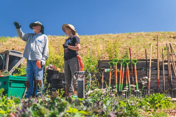 Volunteers at a work party at the Beacon Food Forest in July 2019. (Photo © Jonathan H. Lee - subtledream.com)