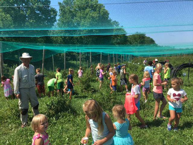 Jim Riddle hosting 50 YMCA campers aged 3-8. (Photo courtesy of Blue Fruit Farm)