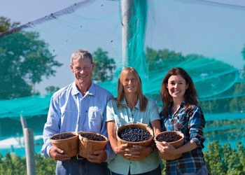 Blue Fruit Farm Minnesota Organic Farmers Jim Riddle, Joyce Ford, and Katie Lange (Photo courtesy of Blue Fruit Farm)