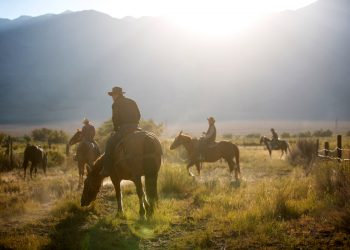 Colorado cowboys grazing their horses in the mountains.