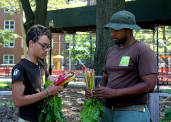 Green City Force team leader CheVon Cooper (right) and Americorps member Manuel at the Forest Houses gardens. (Photo by Robert Cowan)