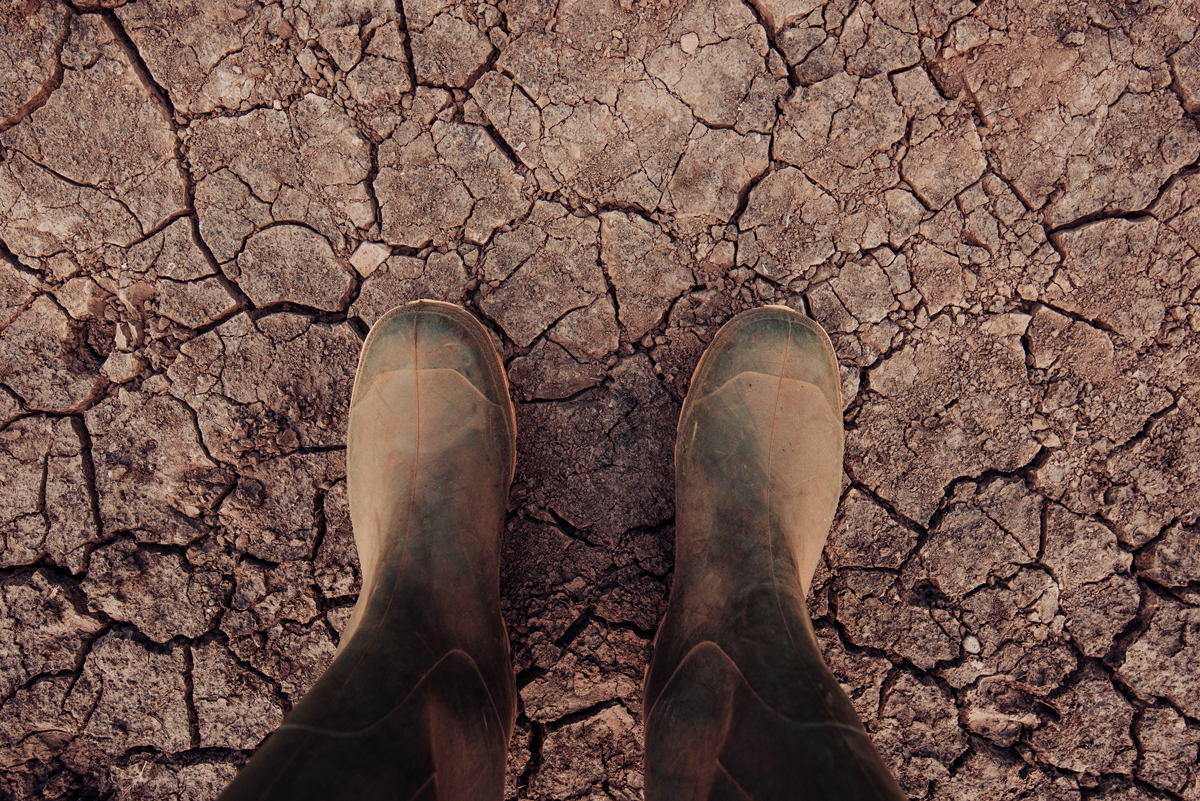 Boots standing in dry soil in a farm field
