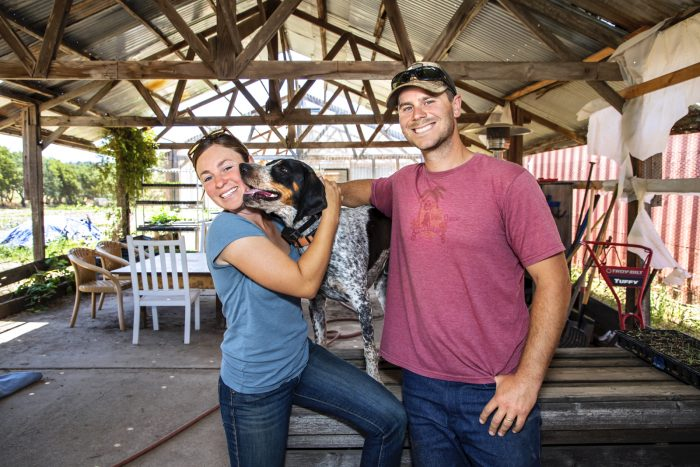 Melissa and Austin Lely run Bee-Well Farms in Glen Ellen, CA.