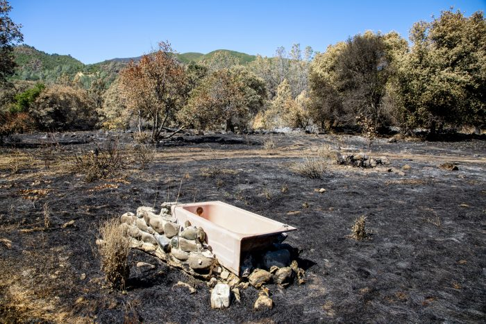 A pink bathtub that doubled as a water trough is all that's left in a grazing field hit by wildfire.