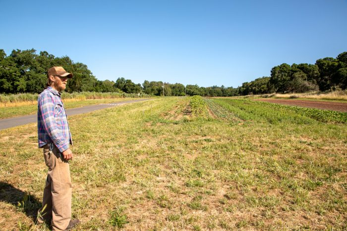 Cooper walks through the upper portion of Oak HIll Farm, where row crops and flowers grow in multiple small plots.