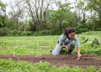 Gail Taylor on her D.C. urban farm. (Photo © Lise Metzger.)