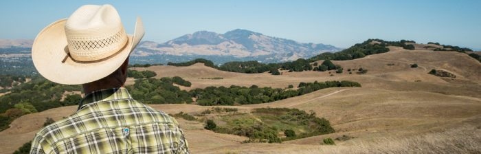 Ned Wood surveys the land his cattle graze in northern California's Contra Costa County. (USDA photo by Lance Cheung)