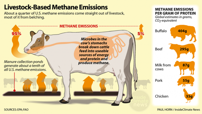 a chart showing livestock based methane emissions