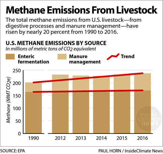 Chart showing methane emissions from livestock