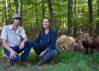 Worth and Hillary Kimmel with their foraging pigs.