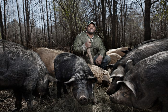 Jon Jackson with some of his hogs. (Photo © Carlisle Kellam)