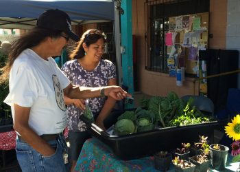 At the farmers' market on the Hopi reservation.