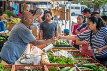 selling local food at the farmers market
