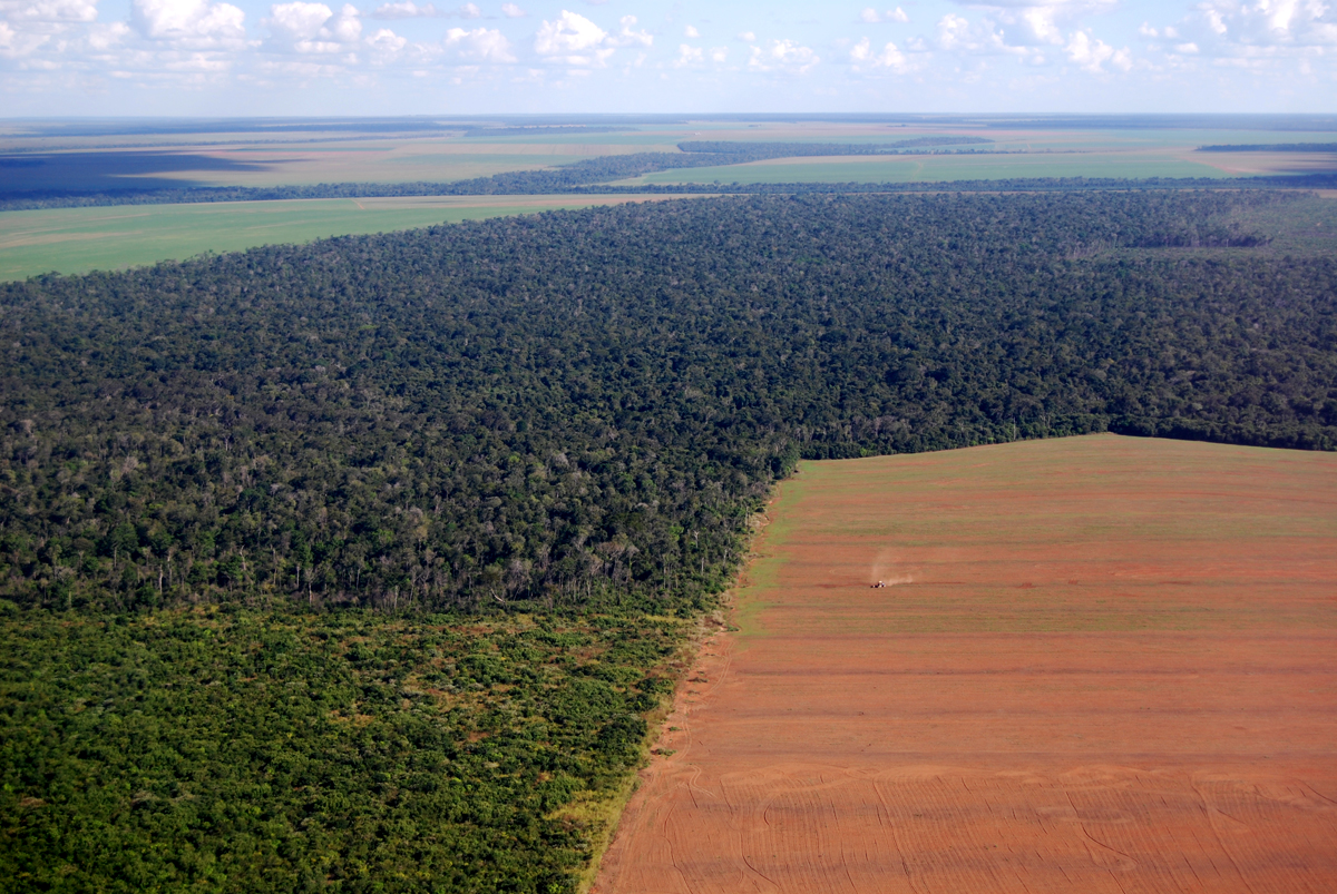 Aerial view of deforestation to make land for farming in Brazil