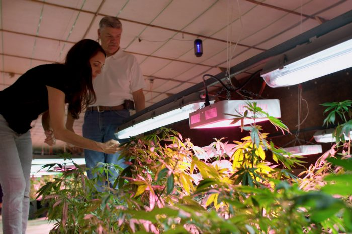 Leah Garcés and Mike Weaver inspect Weaver's indoor hemp cultivation operation. (Photo credit: Mercy for Animals)