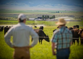 NRCS conservationist Dan Durham, left, with Stephen Becklund, manager of the J Bar L Ranch near Twin Bridges, Montana. (Photo CC-licensed by NRCS Montana)
