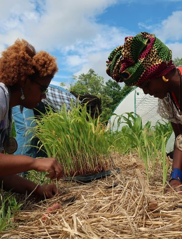 Black Farmers Are Embracing Climate-Resilient Farming