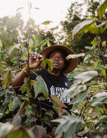 Germaine Jenkins inspects the crops at Fresh Future Farm in North Charleston, South Carolina. (Photo by Elizabeth Ervin.)