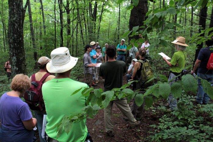 Appalachian Beginning Forest Farmer Training. (Photo by Priya Jaishanker)