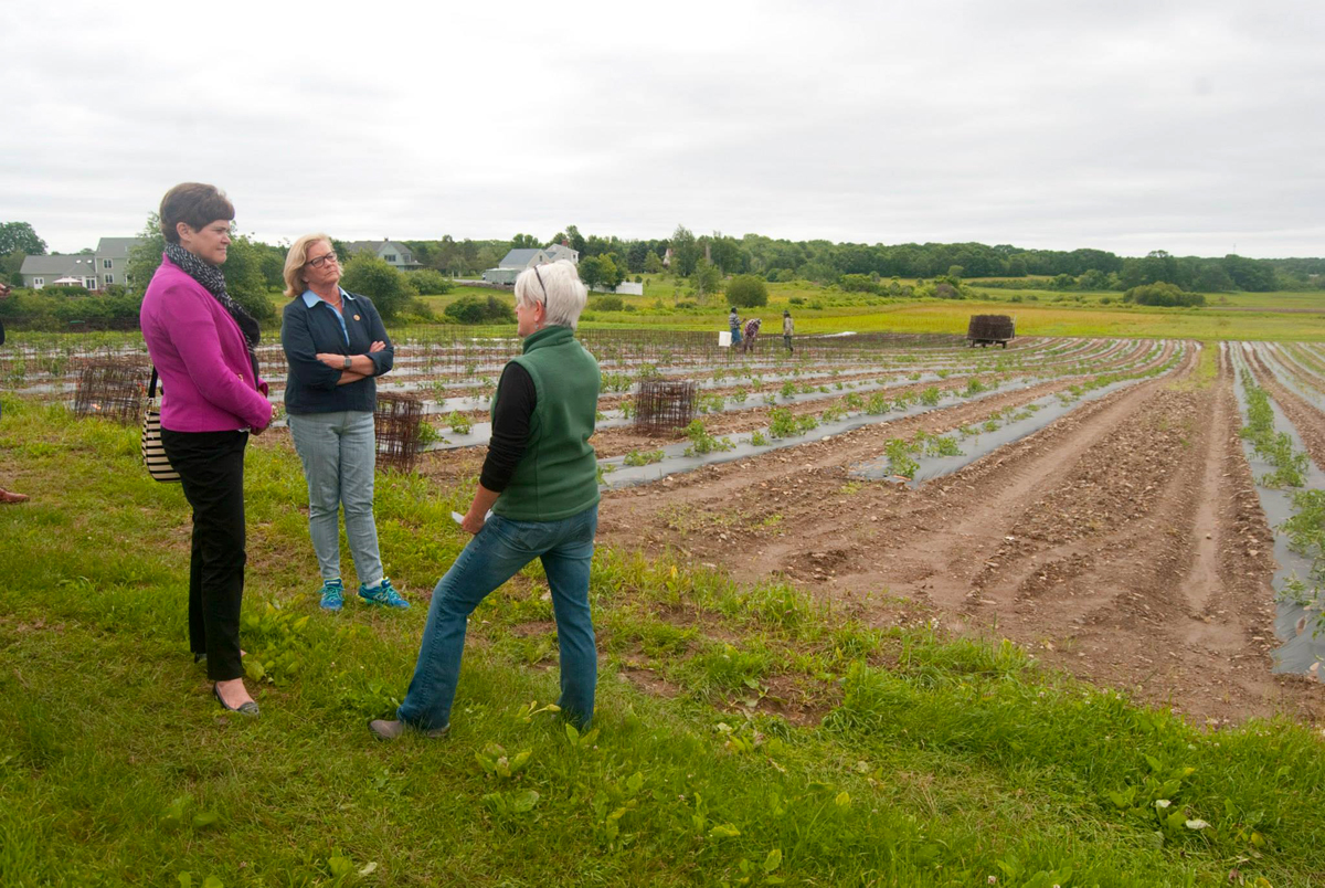 Chellie Pingree visiting a farm during a Women in Agriculture event