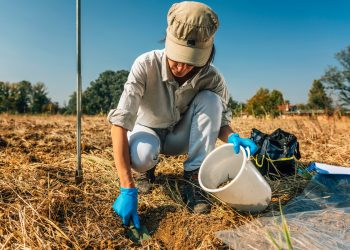 organic farm researcher testing soil health