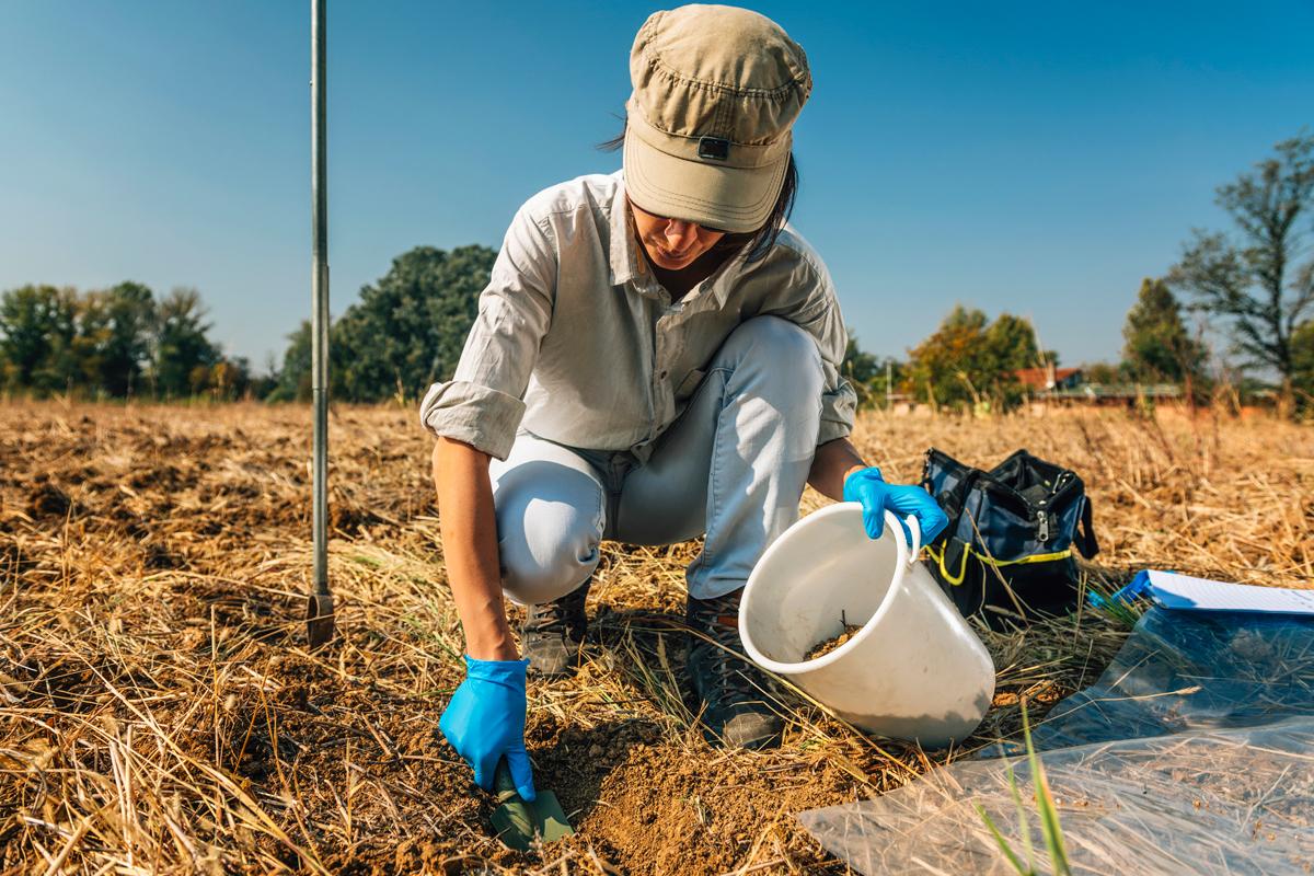 organic farm researcher testing soil health