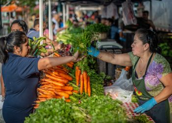 A farmers' market in Queens, New York. (USDA photo by Preston Keres)