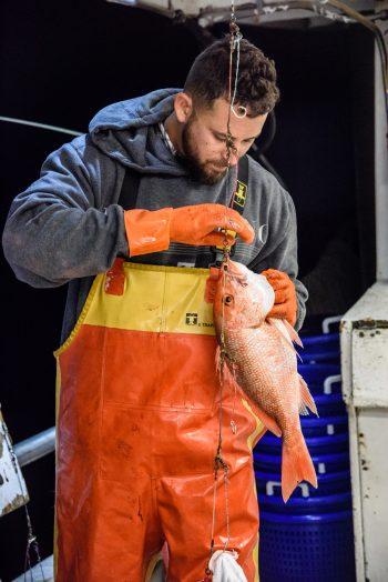 Jason Delacruz. (Photo courtesy of the Gulf of Mexico Reef Fish Shareholders Alliance)