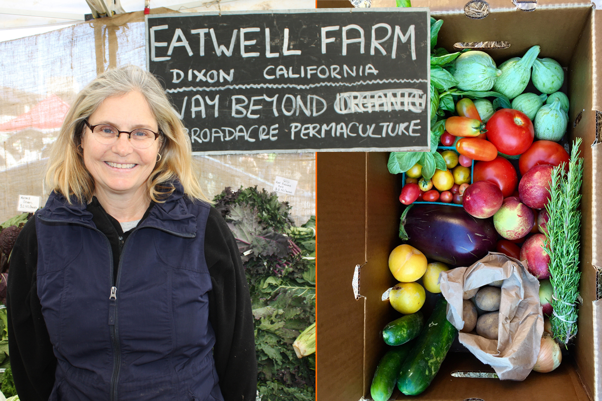 Community Supported Agriculture Is Surging Amid the Pandemic | Civil Eats