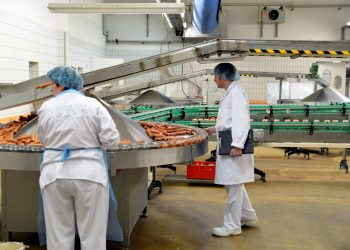 Food safety inspection at a meat processing facility.