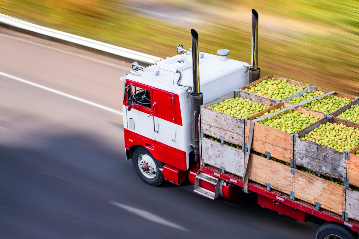 a big rig truck hauling fresh food from the farm to the market as part of a food distribution supply chain