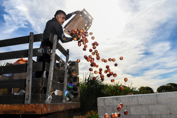 A farm employee composts unwanted produce. USDA photo by Lance Cheung.