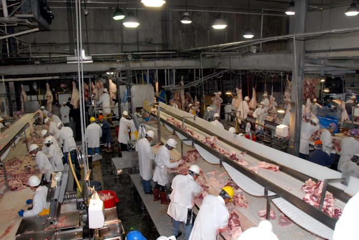 meatpacking workers in a slaughterhouse. USDA photo by Alice Welch