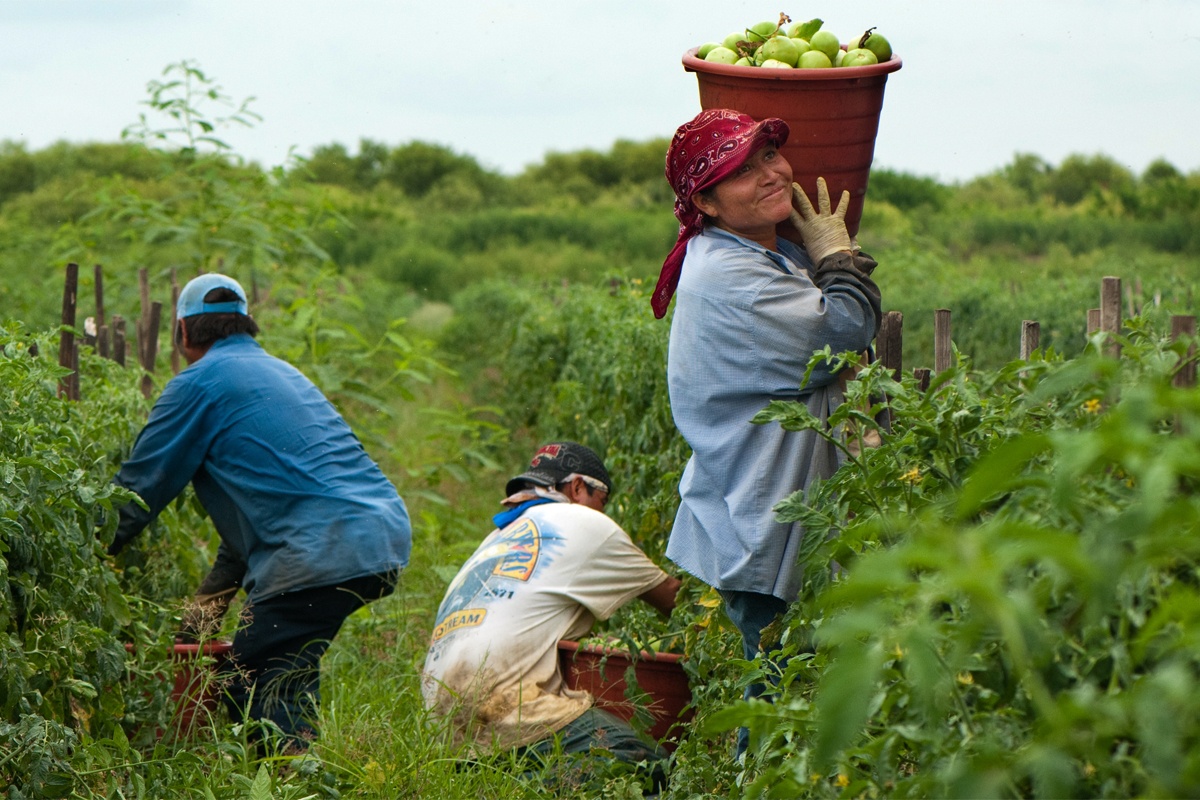 Coalition of Immokalee Worker carrying produce. Photo from iStockphoto.com.