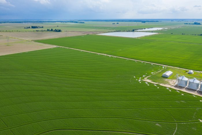 An Arkansas rice farm. USDA Photo by Lance Cheung.