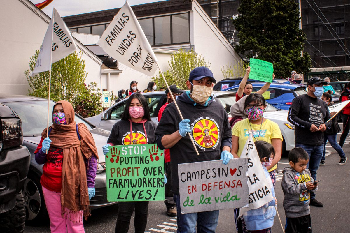 Farmworkers Lack Adequate Legal and Public Health Protections During Pandemic